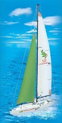 Яхта Pilotage Triumph 800. Радиоуправляемая модель